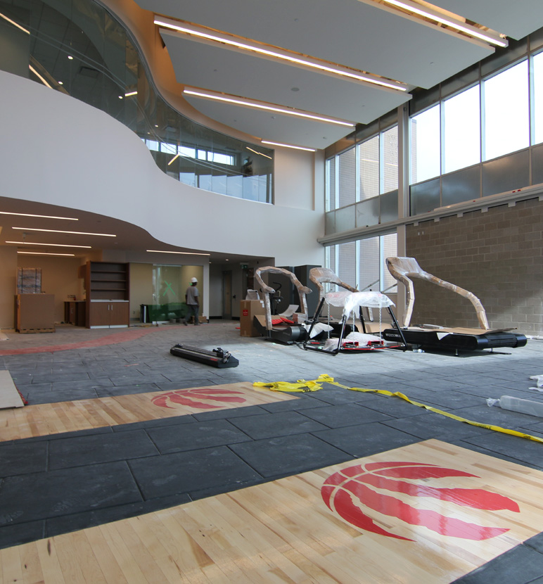 New Toronto Raptors Training Facility Entuitive Entuitive