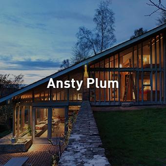thumbnail_ansty_plum