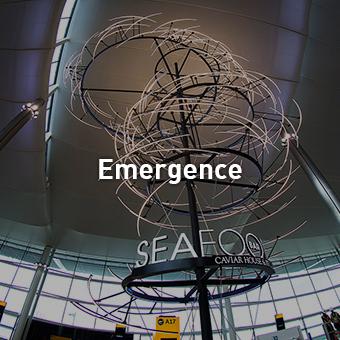 thumbnail_emergence